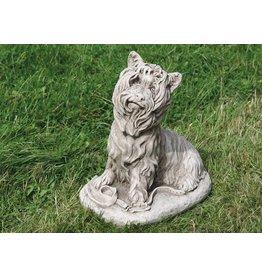 dragonstone Große Yorkshire-Terrier-Hund