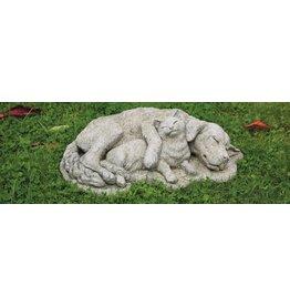 dragonstone Hund und Katze