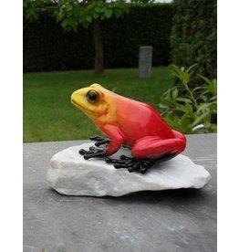 Frosch roten Stein