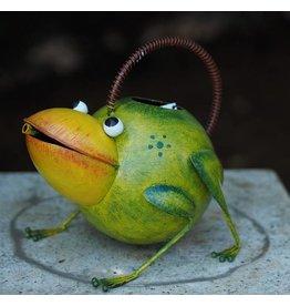 Metallfigur Frosch Gießkanne