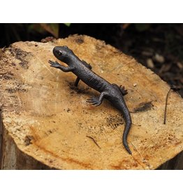 Eliassen Bronzefigur Salamander