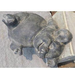 Eliassen Pig Bild liegenden Beine