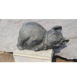 Eliassen Lustiges Schwein Bild
