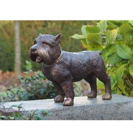 Bronzen Yorkshire hond