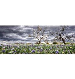 Eliassen Gemälde Glas 60x160cm Felder