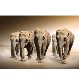 MondiArt Glasmalerei Elefant groß 80x120cm - Copy - Copy