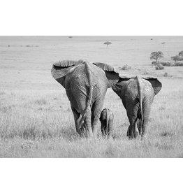 MondiArt Glasmalerei Elefanten Familie 80x120cm