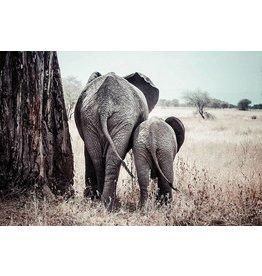 MondiArt Aluminiummalerei Elefant mit Kalb 80x120cm