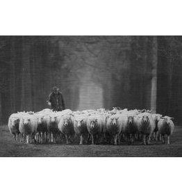 MondiArt Aluminium Malerei Shepherd 80x120cm