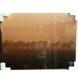 MondiArt Glasmalerei Gruppe Pferde 60x80cm