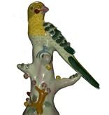 Papegaai op tak
