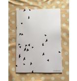 poster - Birds 1