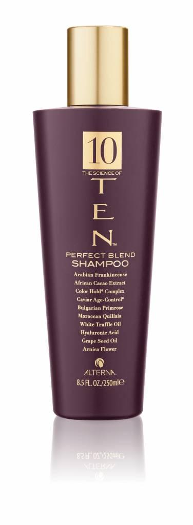 Alterna Alterna TEN Perfect Blend Shampoo 250ml