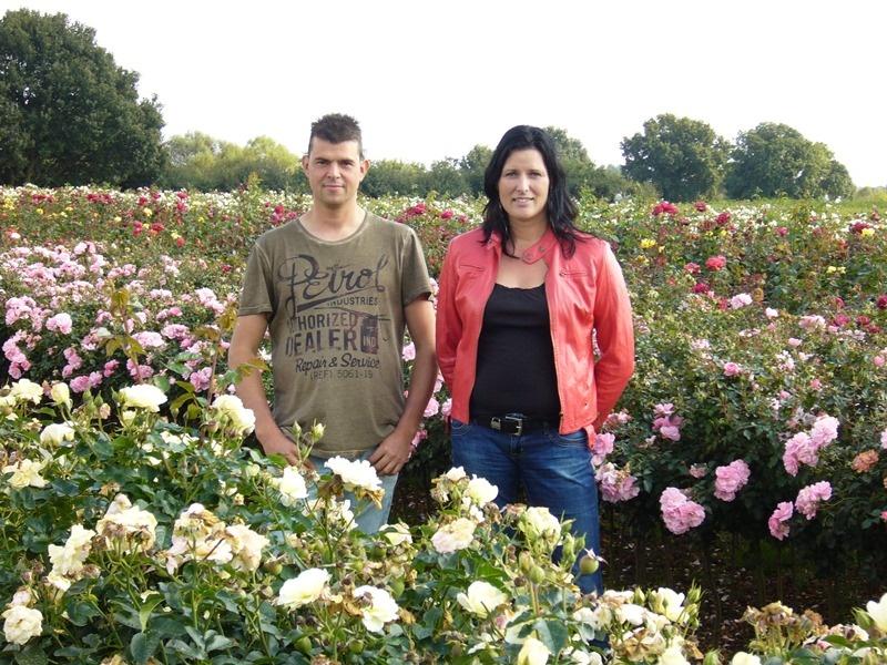 www.seurosa.nl - Rozen kopen