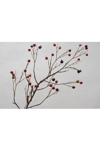 Silk-ka Fruittak rose musquée rouge 120 cm