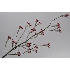 Silk-ka Bessentak rood 120 cm