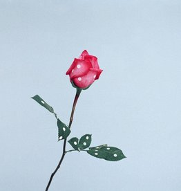 Foam Editions Ina Jang - A Rose, 2009