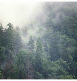 Foam Editions Sanne Peper - Great Smokey Mountains, Tennessee, 2009