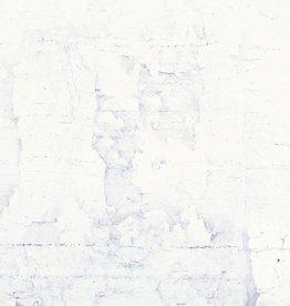Foam Editions Misha de Ridder, Falaise VI, 2016