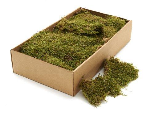Mos Groen 500 gram