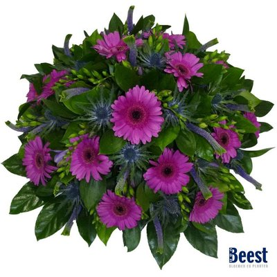 Biedermeier paars/ roze