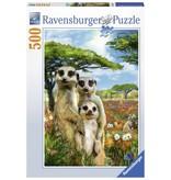 Ravensburger Puzzels Ravensburger Puzzel Stokstaartjes 500 stukjes