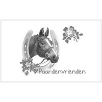 Spiegelburg Paardenvrienden