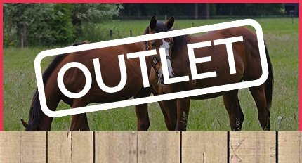 Outlet Paardencadeaus