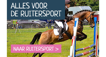 Ruiter &  Paard
