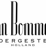 Van Bommel Schoensmeer Brazil