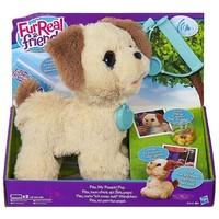 Pax FurReal: my poopin pup