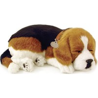 Perfect Petzzz soft Beagle