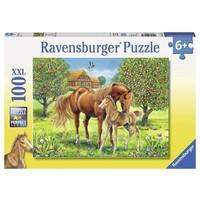 Puzzel XXL Paarden in de wei: 100 stukjes