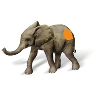 Figuur Tiptoi: Afrikaanse olifant kalf