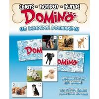 Domino Hond