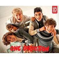 Poster One Direction 61x92 cm bundle