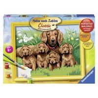 Hondenfamilie Schilderen op nummer