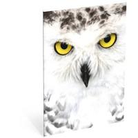 Schrift Wood owl A4 geruit