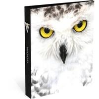 Ringband Wood owl 23-rings