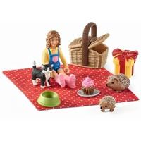 Verjaardag picnic Schleich