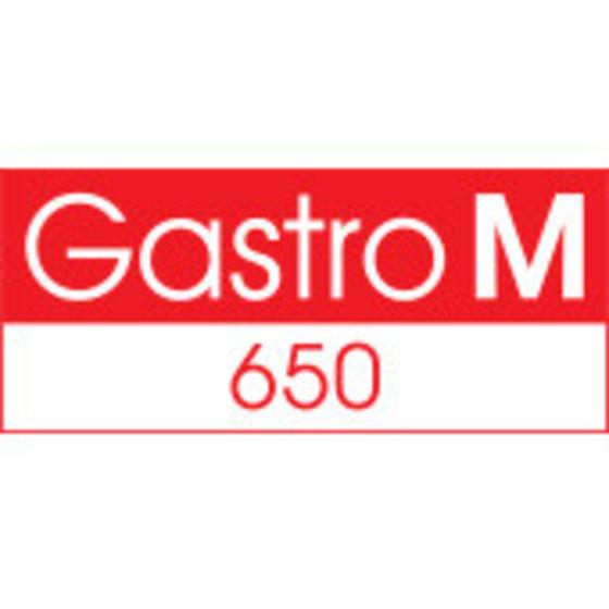 Gastro M 650