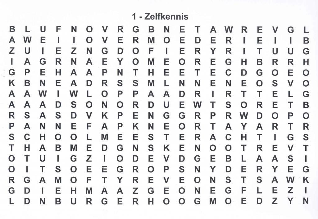 Puzzelboek Grootletter Formaat Kopen Grootletter