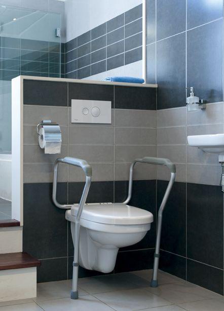 Toiletsteun liddy