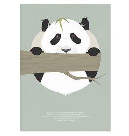 norsuStories Poster Panda & verhaaltje