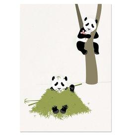 norsuStories Poster Panda 50 x 70 cm