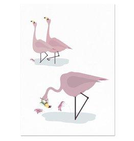 norsuStories Poster Flamingo