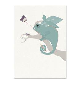 norsuStories Kaart Kameleon - wit