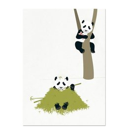 norsuStories Kaart Panda - wit