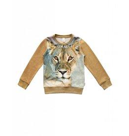 Wild Wild - Sweater Leeuw
