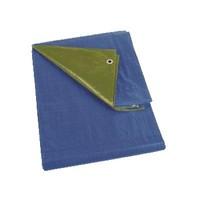 Afdekzeil 6x8 'Medium' PE 150 gr/m2 - Groen/Blauw